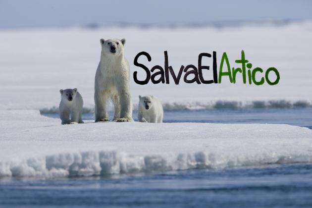 ilcanallarubens_salvaelartico_2015_OSPAR