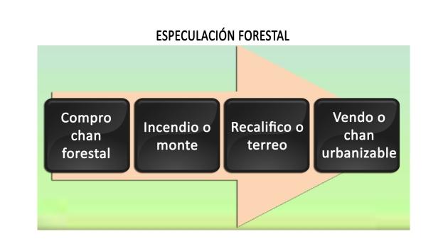 ilcanallarubens_ Especulacion forestal _ Marca España _ICR-Design