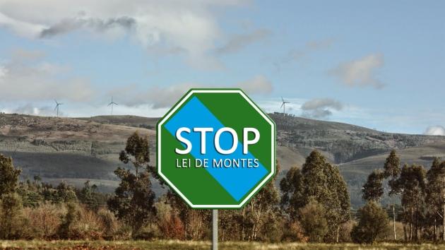 ilcanallarubens_ STOP LEI DE MONTES _ICR-Photographer_2015