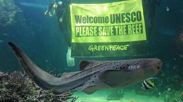 ilcanallarubens_gran-barrera-coral_UNESCO_2015