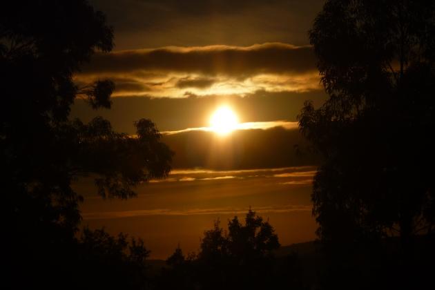 ilcanallarubens_ICR-Photographer_imposto ao sol_ 2015_Vigo