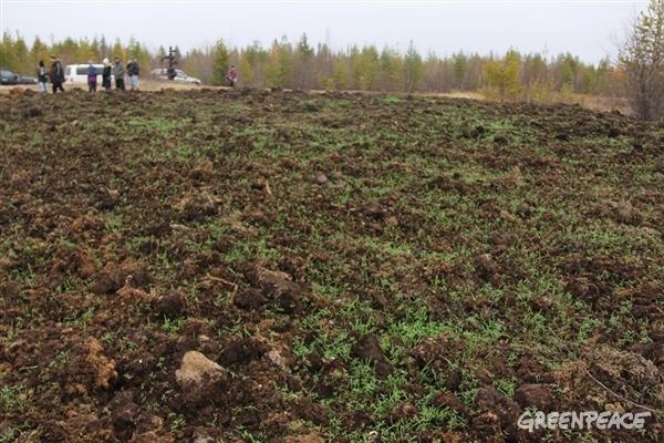 ilcanallarubens_resultados da limpeza do artico ruso_2015