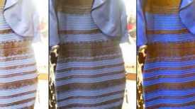 ilcanallarubens_vestido azul negro_branco dourado_2015