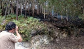 ilcanallarubens_rescoldos del incendio en Darbo_2016