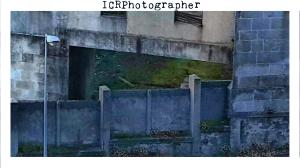 icrphotographer_panificadora_13