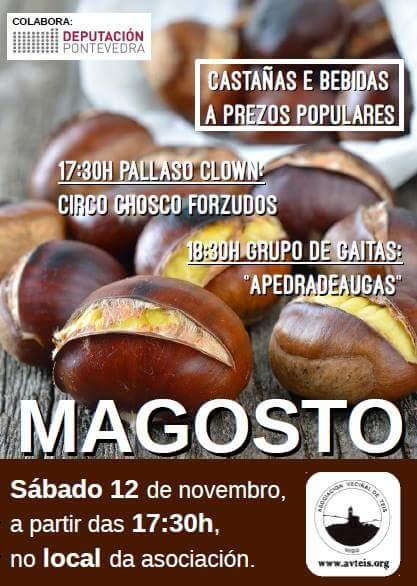 ilcanallarubens_cartaz-magosto-teis_vigo_2016